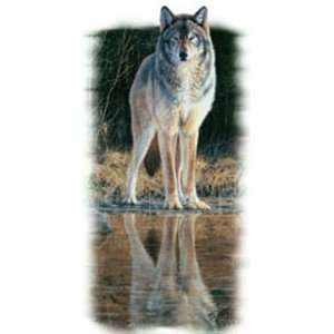 T shirts Animals Wildlife Wolf Creek XXL