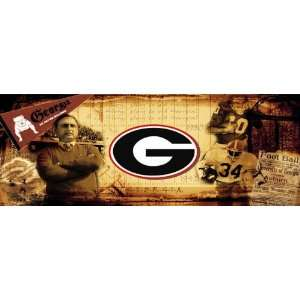 Georgia Bulldogs UGA Vintage Sports Wall Mural Wallpaper