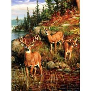 Super Plush Deer Queen Mink Style Blankets 79x95