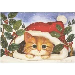 Orange Kitten Boxed Holiday Cards Christmas Kitten
