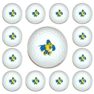 Delaware Fightin Blue Hens Team Logo Golf Ball Dozen Pack