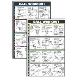 Co Ed Swiss Ball Workout Chart Kit Sports & Outdoors