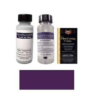 1 Oz. Regal Plum Pearl Metallic Paint Bottle Kit for 1993