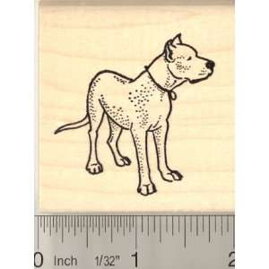 Argentine Dogo Dog Rubber Stamp Arts, Crafts & Sewing