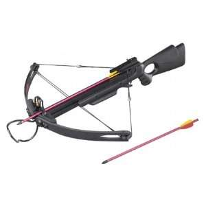 Mk 250 Compound Crossbow Brand New Powerful Bow  Sports