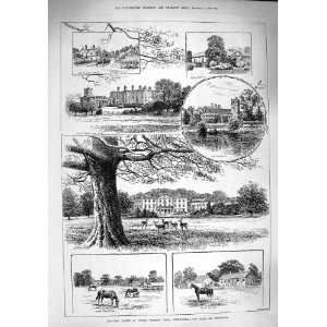 1890 Advertisement Beechams Pills Pleasantries Parcel