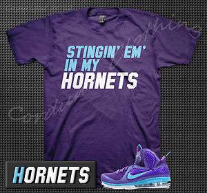 Summit Lake Hornets T Shirt Big Bang Swingman Foamposite Nike Jordan 1