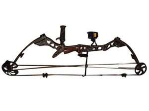 Mathews MQ1 Bow