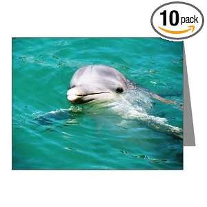 Water Blank Note Card (Set of 10) 4.25 X 5.5