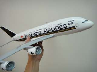 BOEING 787 (42cm Solid One piece TRAVEL AGENT airplane MODEL