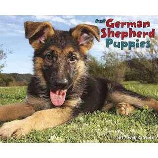 German Shepherd Puppies Wall Calendar, Willow Creek Press Calendars