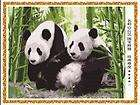 Acrylic Paint by Number kit 20x16 Panda, DIY Oil Painting kits.