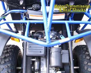 Dune Buggy FREE SHIP Automatic+Reverse in Dune Buggies / Sand Rails