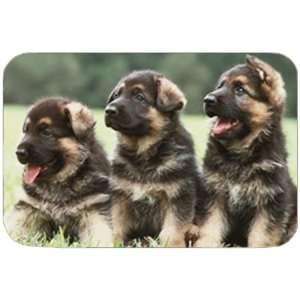 German Shepherd Puppies Tempered Cutting Board: Kitchen