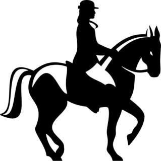 Horse Rider Dressage Equestrian Truck Trailer Decal 8