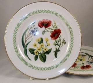 Spode COUNTRY LANE 2 Dinner Plates GREAT VALUE