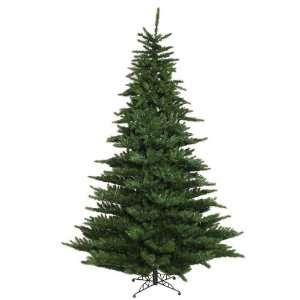 Teton Fir Artifical Christmas Tree   900 Clear Lights