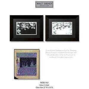 Walt Disney Signature Art Collection ~ Sleeping Beauty