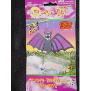 Flying Bat Foam Craft Kit Toys & Games