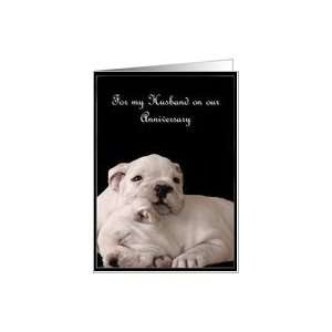 Happy Anniversary Husband Bulldog Puppies Card: Health